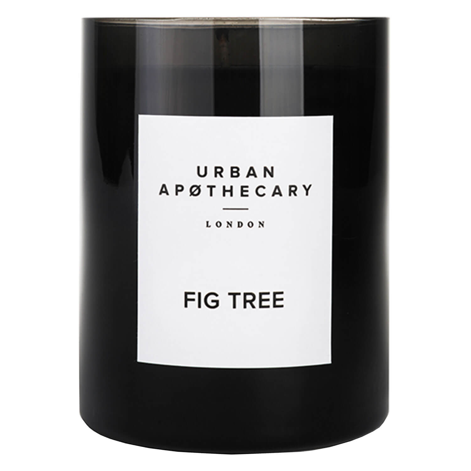 Urban Apothecary - Luxury Boxed Glass Candle Fig Tree